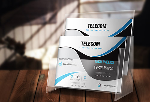 French Telecom Company